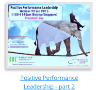 Positive Performance Leadership - part 2